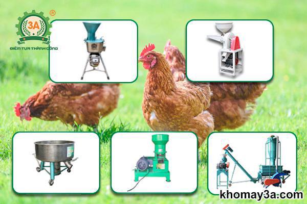 Chế phẩm sinh học trong chăn nuôi gà hiệu quả